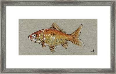 Gold Fish Framed Print by Juan  Bosco