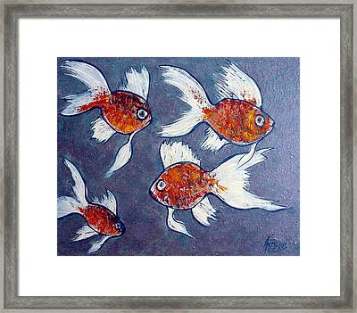 Gold Fish Framed Print by Kenny Henson