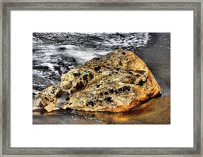 Framed Print featuring the photograph Gold Flecks by Bob Wall