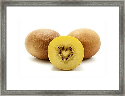 Framed Print featuring the photograph Gold Kiwifruit by Fabrizio Troiani