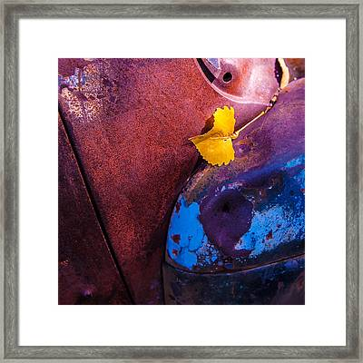 Gold Leaf And Patina Color Framed Print