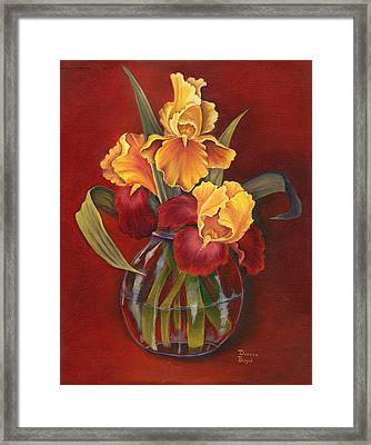 Gold N Red Iris Framed Print by Doreta Y Boyd