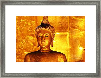 Framed Print featuring the photograph Gold On Gold by Nola Lee Kelsey
