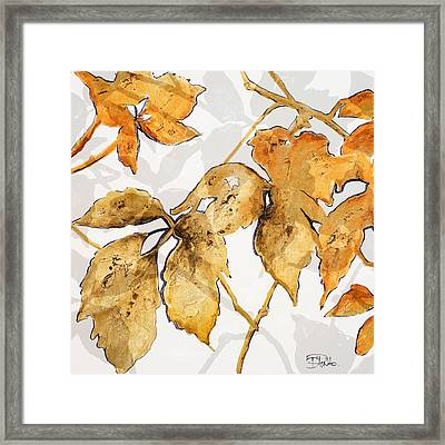 Gold Shadows II Framed Print by Patricia Pinto