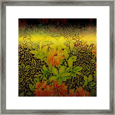 Gold Sheet Floral 2 Framed Print by Patricia Keith