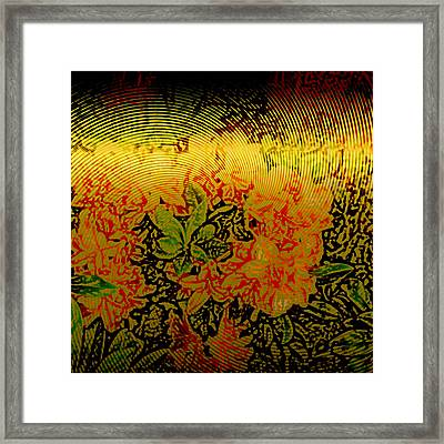 Gold Sheet Floral 3 Framed Print by Patricia Keith