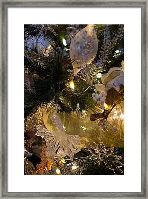 Gold Splendar Framed Print by Joanne Smoley