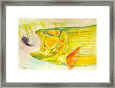 Feathers To Get Gold  Framed Print by Yusniel Santos