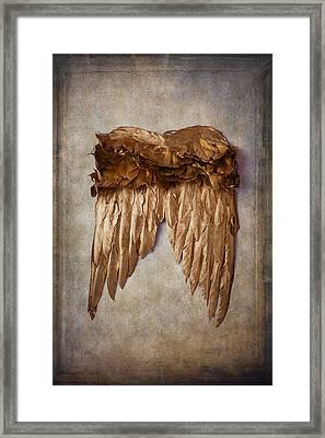 Gold Wings Framed Print