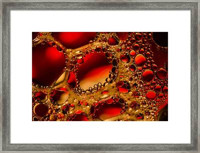 Gold With Red Rubies Framed Print