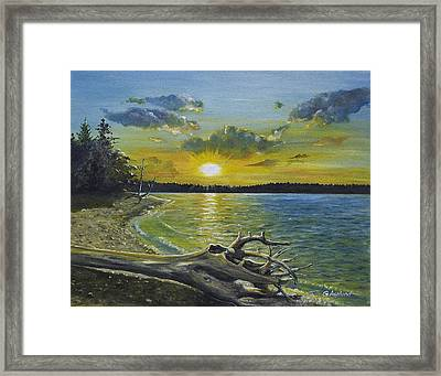 Golden Afternoon At Ketron Island Framed Print