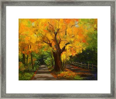 Golden Afternoon Framed Print by Nora Sallows