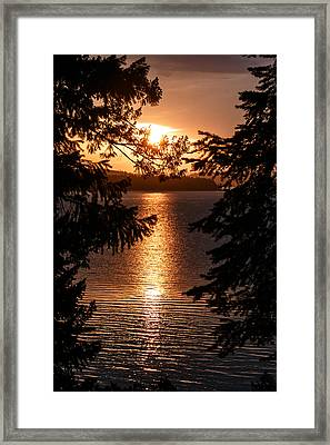 Golden Almanor Framed Print