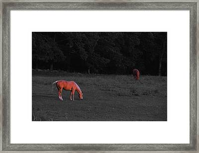 Golden Framed Print by Andrea Galiffi