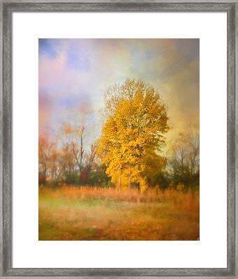 Golden Autumn Splendor - Fall Landscape Framed Print