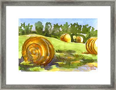 Golden Bales In The Morning Framed Print by Kip DeVore