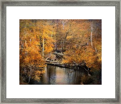 Golden Blessings Framed Print by Jai Johnson