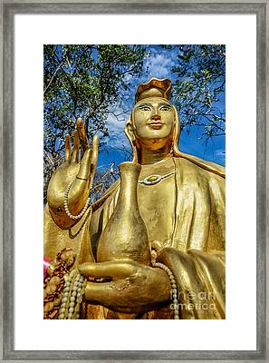 Golden Buddha Statue Framed Print by Adrian Evans