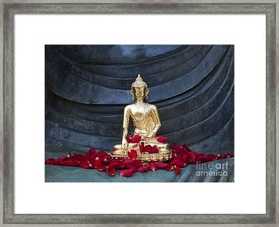 Golden Buddha Framed Print by Tim Gainey