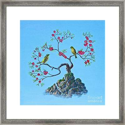 Golden Bush Robins In Old Plum Tree Framed Print