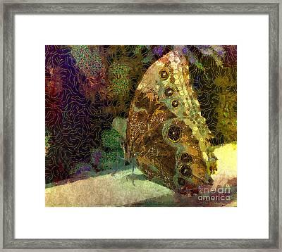 Golden Butterfly Framed Print