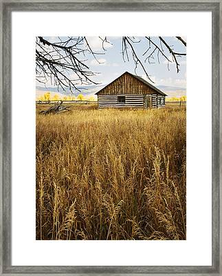 Golden Cabin Framed Print