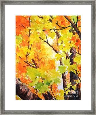 Golden Canopy 2 Framed Print by Betty M M   Wong