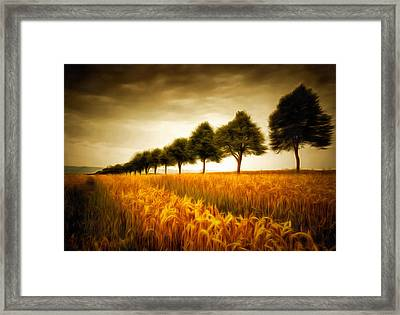 Golden Cornfield With Row Of Trees Painting Framed Print