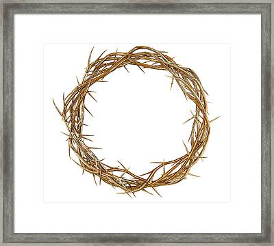 Golden Crown Of Thorns Framed Print