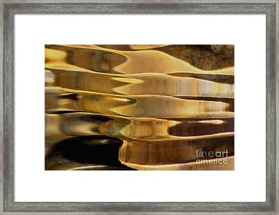 Golden Dance Framed Print