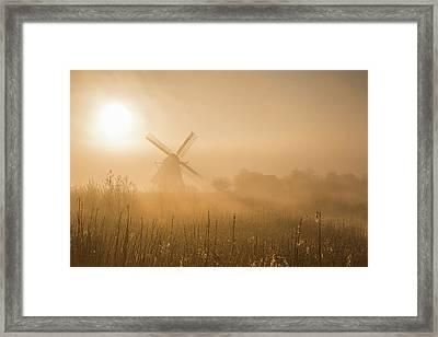 Golden Dawn. Framed Print
