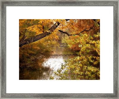 Golden Days Framed Print by Jessica Jenney