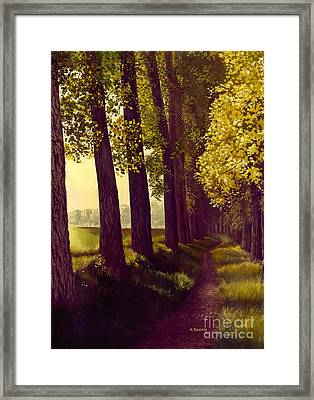 Golden Days Framed Print by Michael Swanson
