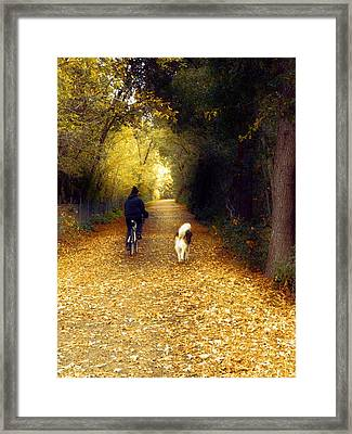 Golden Days Of Fall Framed Print