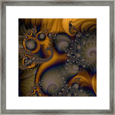 Golden Dream Of Fossils Framed Print
