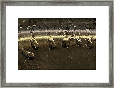 Framed Print featuring the photograph Golden Droplets by Geraldine Alexander