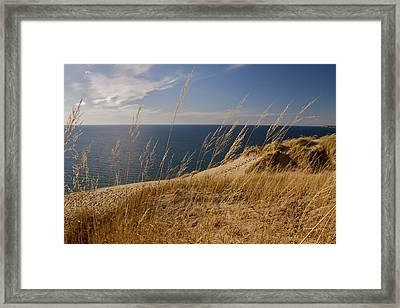 Golden Dune Grass On The Lake Framed Print