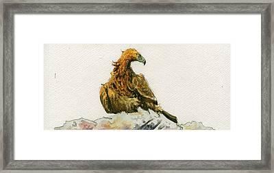 Golden Eagle Aquila Chrysaetos Framed Print by Juan  Bosco