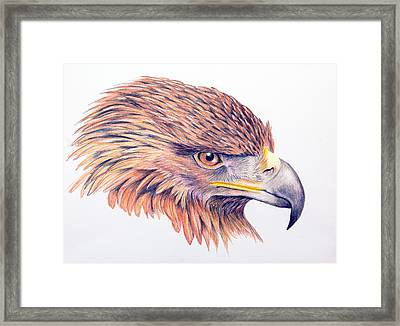 Golden Eagle Framed Print by Mary Mayes