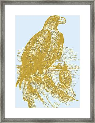 Golden Eagle On Chrome Framed Print