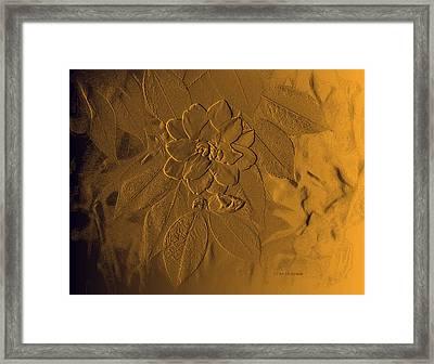 Golden Effulgence Framed Print