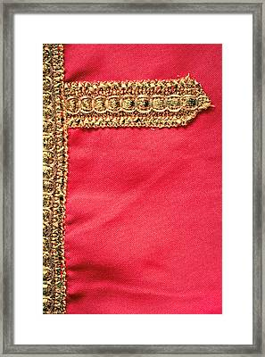 Golden Embroidery Framed Print by Tom Gowanlock