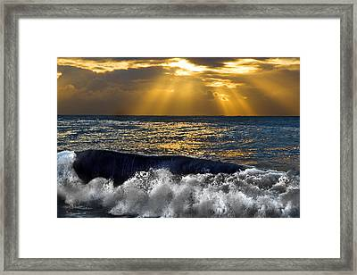 Golden Eye Of The Morning Framed Print