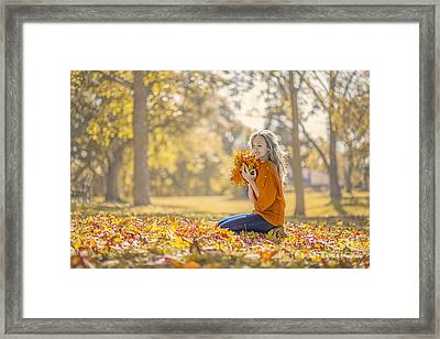 Golden Fall Framed Print by Evelina Kremsdorf