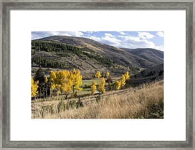 Golden Fall In Montana Framed Print by Dana Moyer