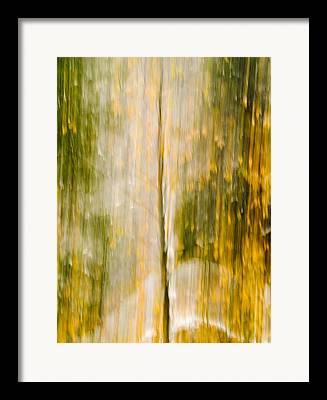 Sierra Gold Framed Prints