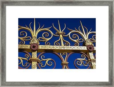 Golden Fence Framed Print by Patricia Hofmeester