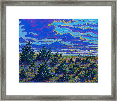 Golden Field And Cedars Framed Print