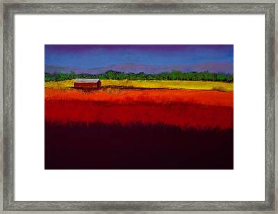 Golden Field Framed Print by David Patterson