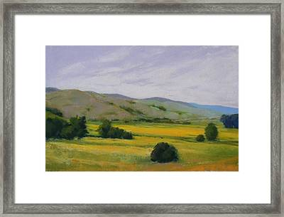 Golden Field II Framed Print